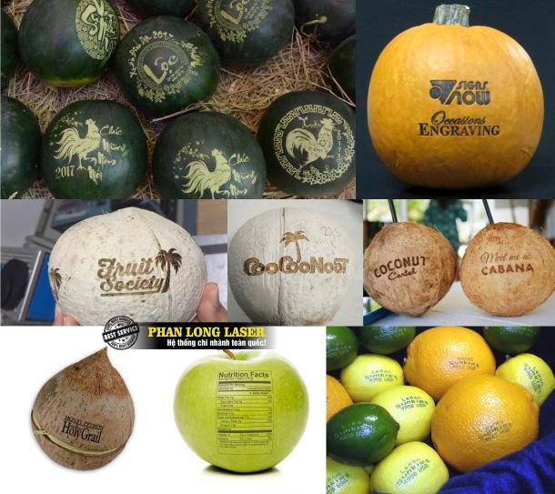 Địa chỉ khắc laser nghệ thuật lên quả dừa, dưa hấu, quả cam, táo, chuối, bòng bưởi giá rẻ