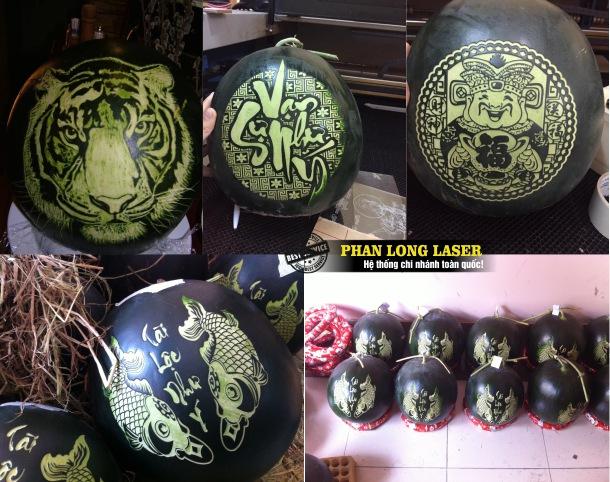 Địa chỉ điêu khắc laser nghệ thuật lên trái cây hoa quả tại Sài Gòn, Đà Nẵng, Hà Nội, Cần Thơ