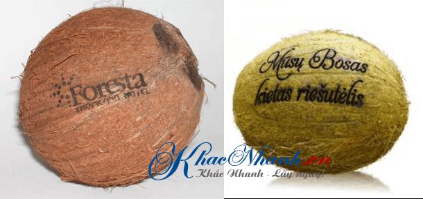 Khắc hình khắc chữ, khắc tên lên trái dừa giá rẻ
