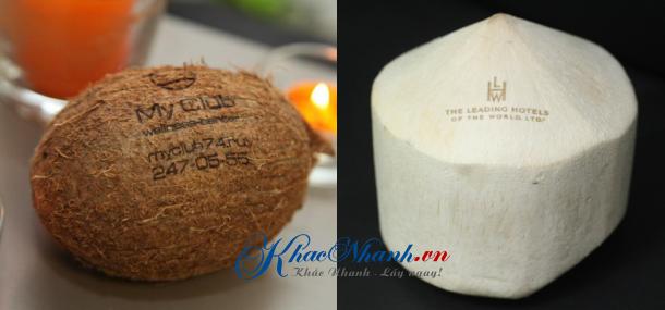 Khắc quả dừa tại Hà Nội
